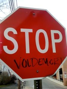 Stop Voldemort_ericskiff_flickr